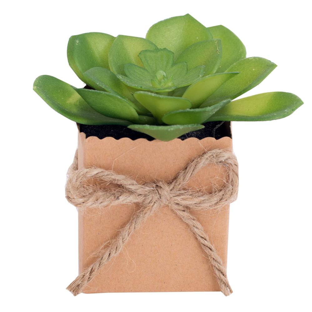 Planta-decorativa-8-cm-Homeclub