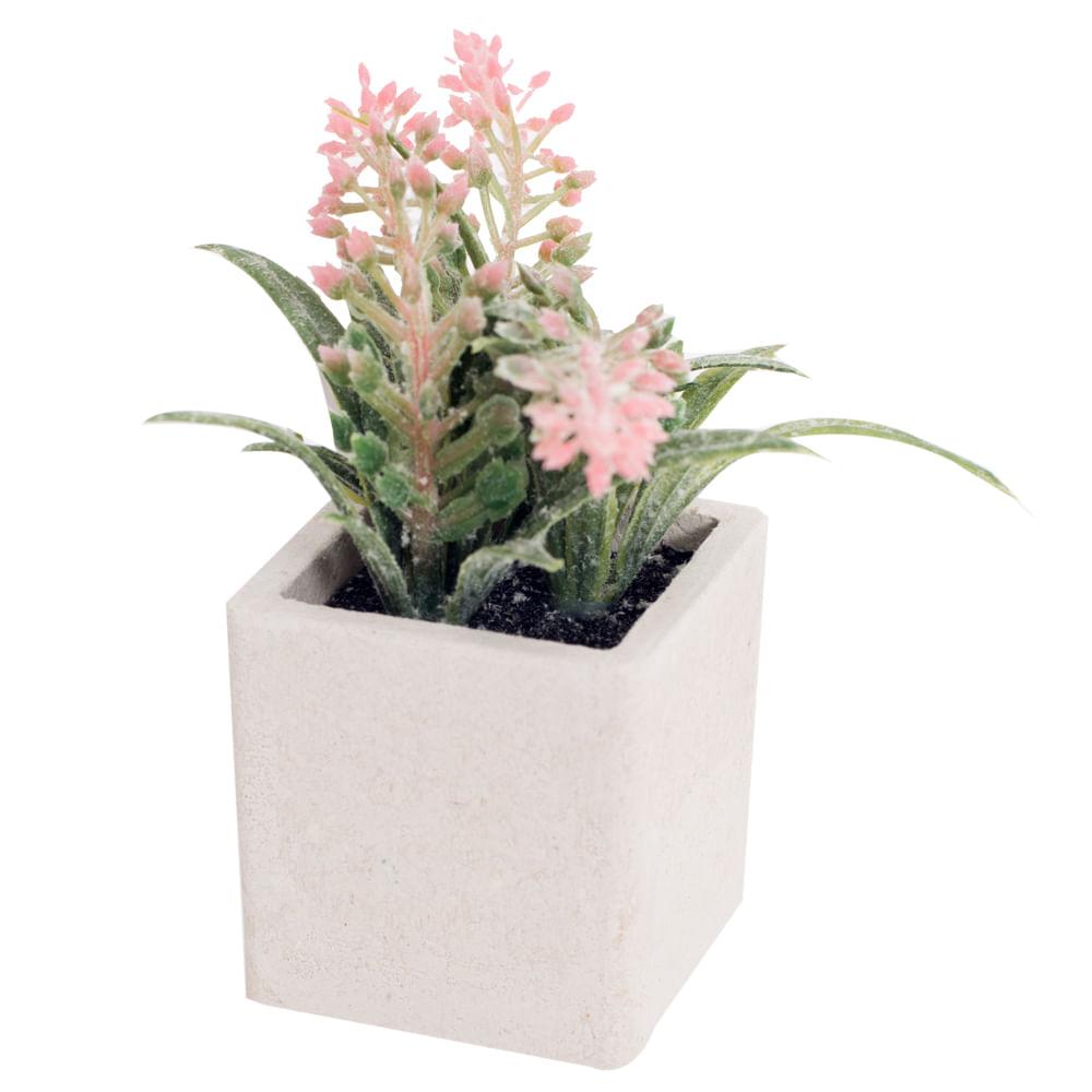 Planta-decorativa-12-cm-Homeclub