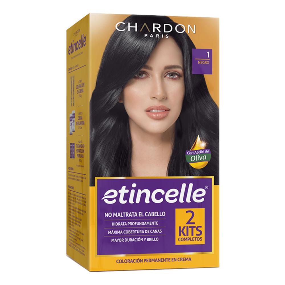 Tinte-Etincelle-50g-x2uds.-Negro