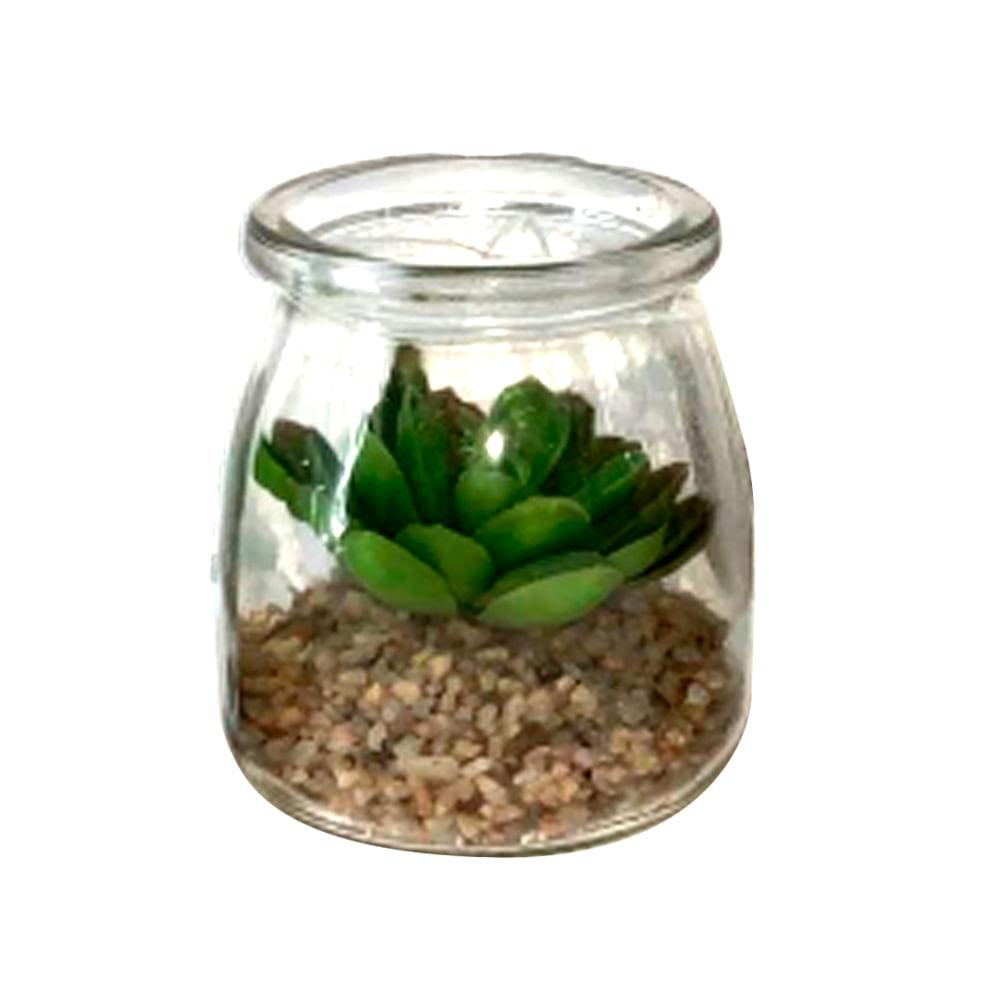 Planta-decorativa-7-cm-Homeclub