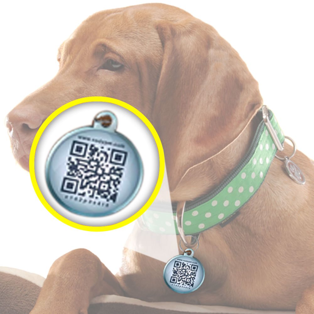 Medalla-de-localizacion-QR-para-mascotas