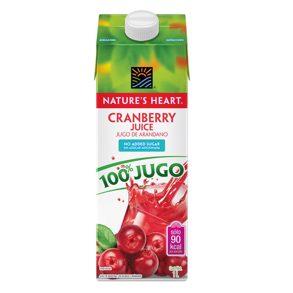 Jugo-De-Arandano-Azucar-Natures-Heart-1-L